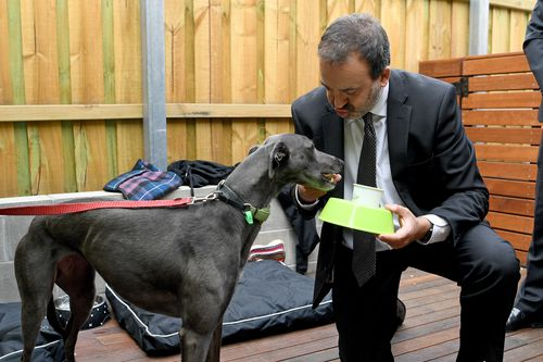 """Minister for Racing Martin Pakula was on-hand to serve up some delicious """"puppuchinos"""". (AAP)"""