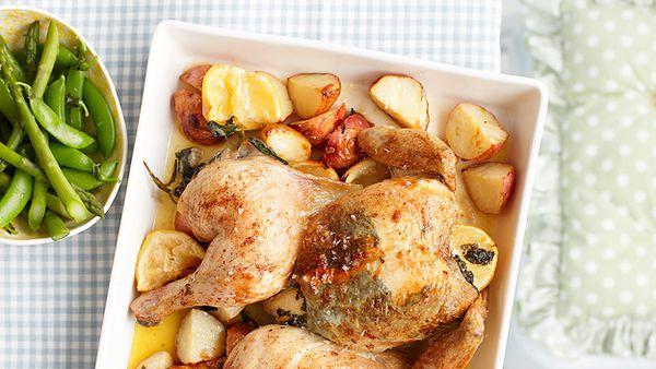 Sage roasted chicken