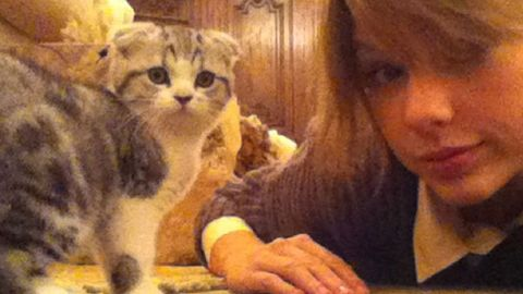 Watch: Taylor Swift's cat Meredith is the most adorable thing alive