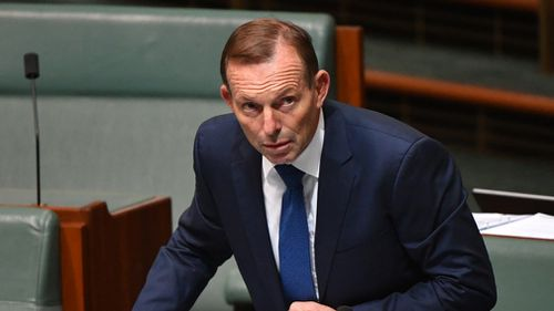 Tony Abbott: Back in the saddle