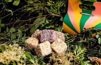 Cult cake brand Tokyo Lamington is replacing their entire range with 'native' flavours for two weeks