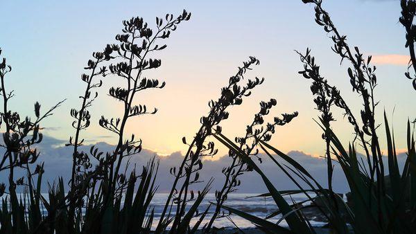 Magical sunset at Punakaiki