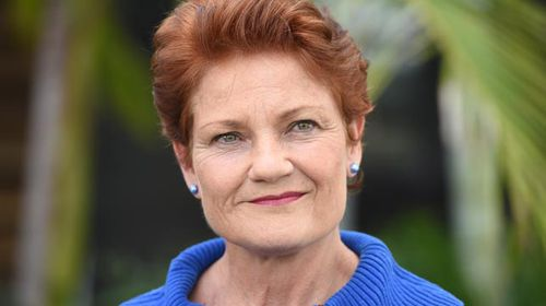 Pauline Hanson not welcome in Australian politics: Turnbull