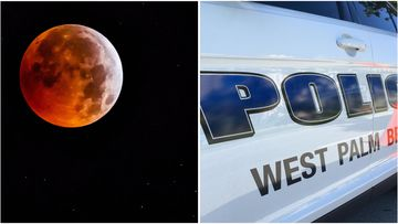 A Florida police officer has been suspended with pay after accidentally running over a couple who were watching the super wolf blood moon eclipse.