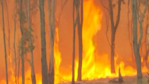 The fire, burning in the area of Mount Lindesay, forms part of the Mount Barney blaze that suddenly flared on this afternoon.