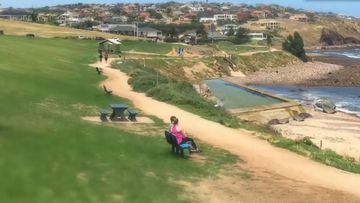Hallett Cove could be home to Adelaide's first sea pool