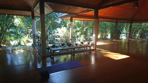 The Synergy Yoga Studio, complete with personal rainforest.