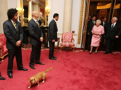 Queen and corgi at Buckingham Palace
