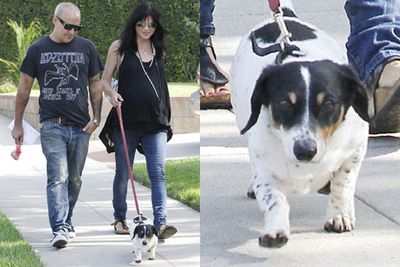 It seems that Selma Blair and partner Jason Bleick share a fondness for walking their mini pooch, Wink.
