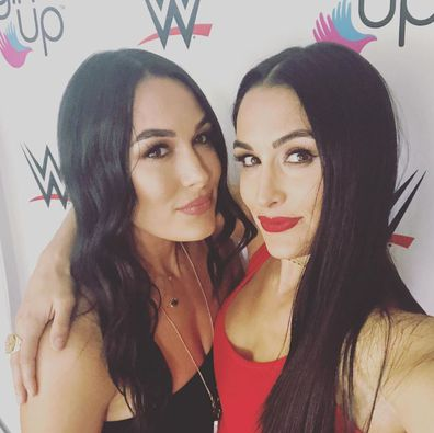 WWE, twins, Nikki Bella, Brie Bella
