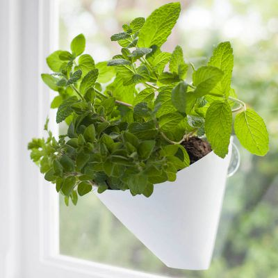 "<strong>Hanging Garden Planters, $20, <a href=""http://www.littleurbanfarmers.com.au/_p/prd1/1533819155/product/white-single-pack"" target=""_blank"">Little Urban Farmers</a></strong>"
