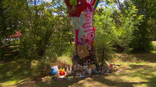 The council will meet with Ms Anderson to discuss other memorial options. (9NEWS)