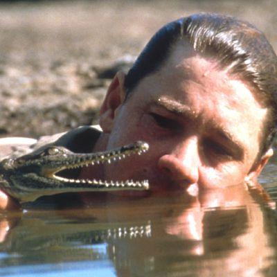 Steve Irwin: 1990s