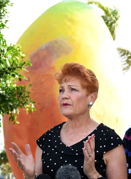 Senator Hanson during her announcement at the Big Mango (Image: AAP)