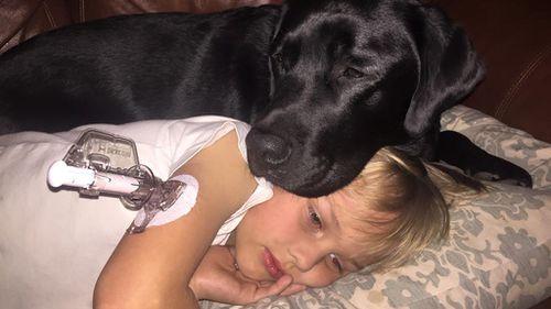 Diabetes alert dog saves life of sleeping boy