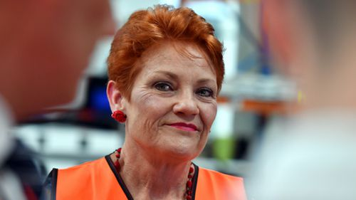 Pauline Hanson's One Nation party expects to nab four to 11 seats. (AAP)