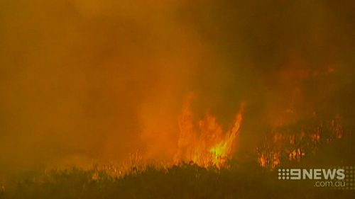 A royal commission found an ageing power line sparked the blaze. (9NEWS)