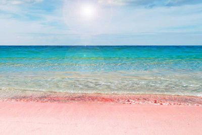 12. Pink Sands Beach in Harbour Island, Bahamas