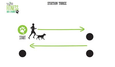 <strong>Station Three: Sit, stay and squat (4 minutes)</strong>