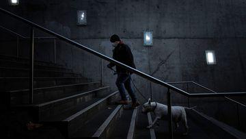 A man wearing a mask walks his dog at Southbank.