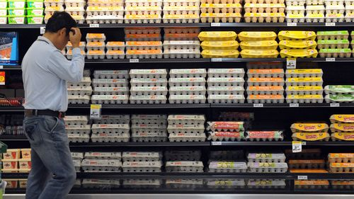 Queensland farm fined for faking 'free range' eggs