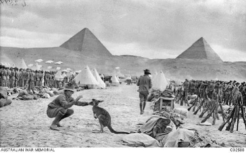 The magnificent backdrop of the Egyptian pyramids frames a soldier's interaction with a kangaroo mascot at Mena Camp. (Australian War Memorial)