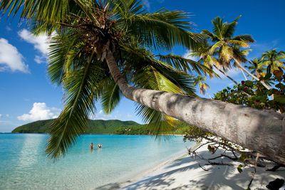 20. Maho Beach – St John, US Virgin Islands