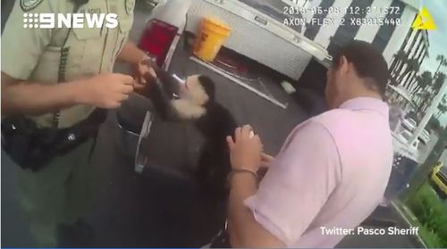 Police said the monkey was friendly while they arrested Mr Hession. Picture: Pasco County Sheriff