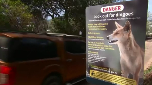 A Dingo danger sign on Fraser Island.