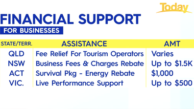 The financial support available for businesses.
