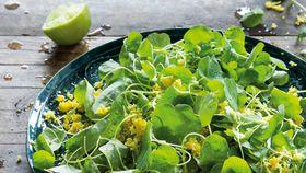 Peter Kuruvita's pennywort salad (gotu kola sambal)