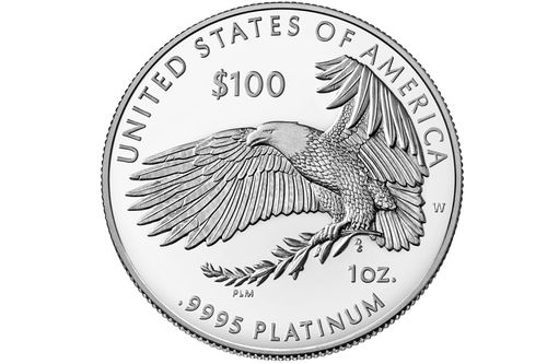 A $100 platinum coin. The idea was to mint one worth a trillion dollars.