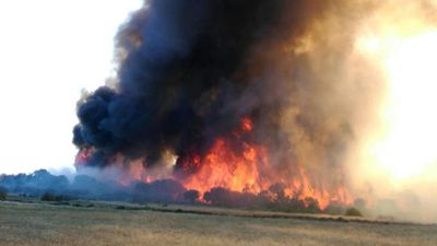 <p>Emergency warnings have been issued for Stockyard Creek and Mullett Lakes in the Merivale area, as well as Grass Patch and Salmon Gums - people must act immediate in order to survive the dangerous blazes.</p><p>If the way is clear authorities are telling people to leave immediately for a safer place. (Image courtesy of Michael Saintly)</p>