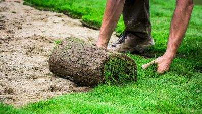 Landscape guru Dave Franklin's tips for laying new turf