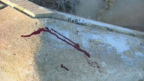 Blood could be seen in the park this morning as the search for the attackers continued. Picture: 9NEWS