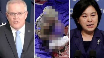 Chinese official says Australia 'should be ashamed' over fake photo