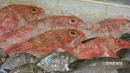 Fish with the highest levels of omega-3 include salmon, blue-eye trevalla, blue mackerel and canned sardines. Picture: 9NEWS.