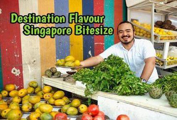 Destination Flavour Singapore Bitesize