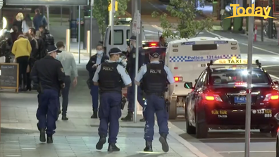 NSW Police will deploy more than 100 additional officers across south-west Sydney to enforce standing public health orders.