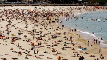 The tourism sector in Australia has been affected by the coronavirus and fewer people travelling internationally.