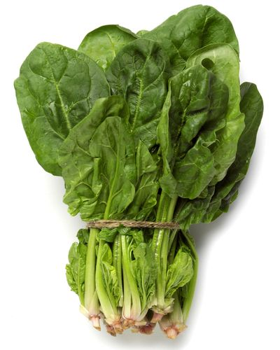Calcium sources: dairy, leafy greens, fish, nuts