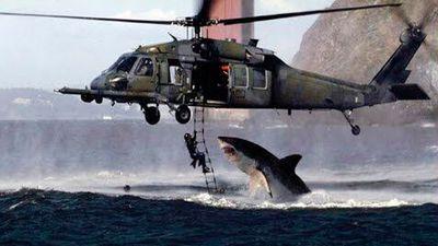 """Bronwyn Bishop using her helicopter to capture the shark that attacked Mick Fanning"" - @ali_yesilyurt"