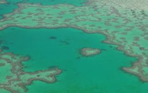The Great Barrier Reef loses half its coral in three decades