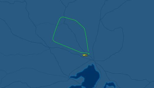 The plane was in the air for about 30 minutes.