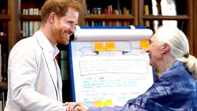 Prince Harry meets with Dr. Jane Goodall.