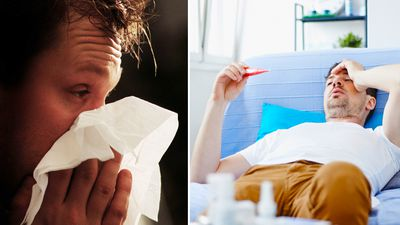 Man flu is a real condition, say scientists