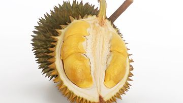Durian is a tropical fruit known for its strong smell. (Getty)