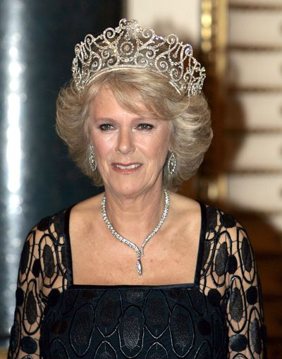 <em><strong>Delhi Durbar Tiara</strong></em><br /> <br /> While the Spencer Tiara is definitely #teamDiana, the Delhi Durbar has become a favourite of Prince Harry's stepmother Camilla, Duchess of Cornwall.<br /> <br /> The impressive piece, was made for Queen Mary to wear to an eventmarking King George's succession as Emperor of India in 1911. The piece was work once by the Queen Mother and then didn't reappear until Camilla's first Tiara moment at a banquet for the visiting royal family of Norway.<br /> <br /> Considering Markle's Hollywood-background, this substantial piece of jewellery has starring role written all over it.
