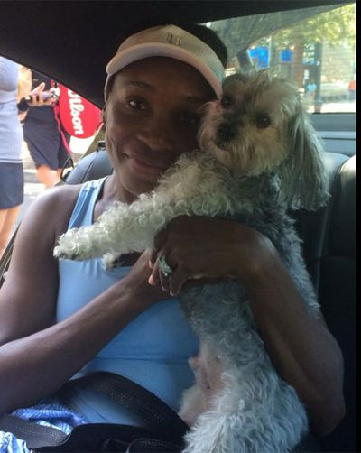 Her sister, Venus, enjoys company en route to training. (@Venuseswilliams)
