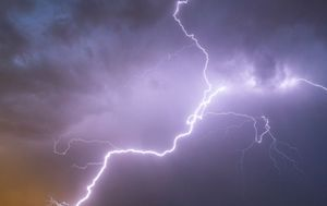 Farmer and teenager killed by lightning strike while they picked fruit